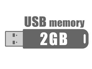USBフラッシュメモリ 2GB バルク