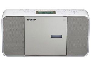 TY-C300