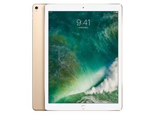 iPad Pro 12.9インチ Wi-Fi 256GB MP6J2J/A [ゴールド]