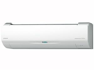 ステンレス・クリーン 白くまくん RAS-W22H