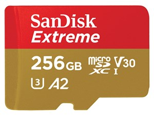 SDSQXA1-256G-GN6MA(海外パッケージ)