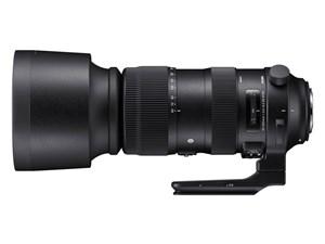 60-600mm F4.5-6.3 DG OS HSM [キヤノン用]